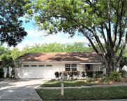 4209 Hollowtrail Drive, Tampa image