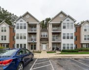8702 Natures Trail Unit #101, Odenton image
