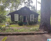 433 Riverview Rd, Adger image
