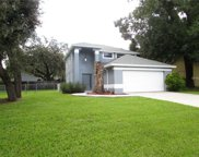 310 Sugar Creek Drive, Plant City image