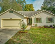 55862 Birch Road, Osceola image
