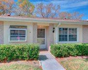 1023 Dunrobin Drive Unit B, Palm Harbor image