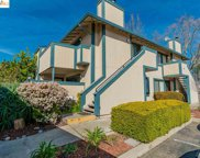 2507 Copa Del Oro Dr., Union City image