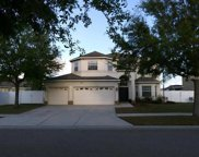 11317 Callaway Pond Drive, Riverview image