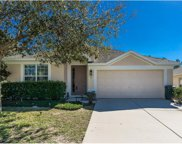 559 Nodding Shade Drive, Brooksville image