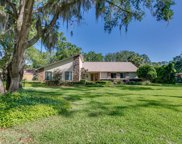 1421 FRUIT COVE FOREST RD S, Jacksonville image