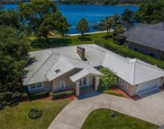 1418 Raintree Lane, Mount Dora image
