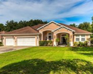 30947 Top Of The Hill Drive, Mount Dora image