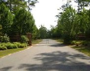 Raspberry Way, Tallahassee image