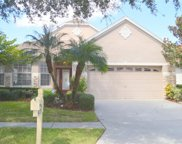 17808 Sandpine Trace Way, Tampa image