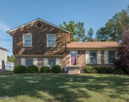 11905 Wide Spring Ct, Louisville image
