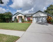 2712 Falling Leaves Drive, Valrico image