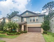11811 Twilight Darner Place, Riverview image