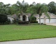 10734 Alico Pass, New Port Richey image