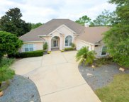 10180 VINEYARD LAKE RD E, Jacksonville image