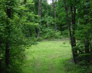 Cherokee Winds Drive, Tellico Plains image