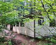 119 Cowlitz View Dr, Packwood image