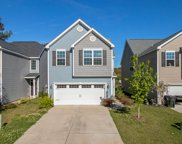 8902 Cat Tail Pond Road, Summerville image