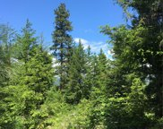 0 Lot 2 Alice Rd, Cle Elum image