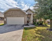 10608 Desert Willow Loop, Austin image