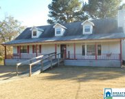 390 Blair Meadow Dr, Odenville image