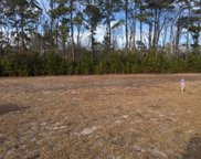 3081 Moss Bridge Ln., Myrtle Beach image