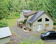 9175 Cornell Creek Rd, Deming image