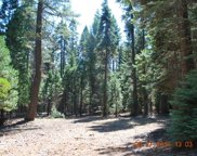 1.25 acres Emigrant Trail, Shingletown image