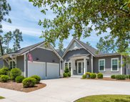 354 Cannonball Lane, Inlet Beach image