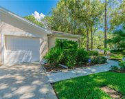 4403 Connery Court, Palm Harbor image