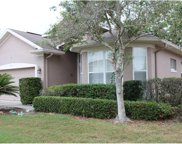 442 Fern Meadow Loop, Ocoee image