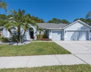 14711 Coral Berry Drive, Tampa image