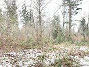 41618 SE 141st St, North Bend image