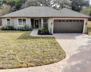 443 N Thompson Road, Apopka image
