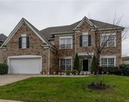15132  Callow Forest Drive, Charlotte image