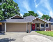 1381  Pear Place, Woodland image