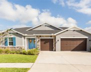 31553 Driscoll Drive, Wesley Chapel image