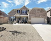 1029 Basket Willow Terrace, Fort Worth image