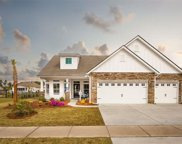 1125 Cycad Drive, Myrtle Beach image