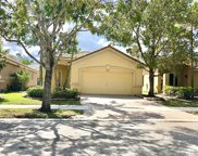 1076 Golden Cane Dr, Weston image