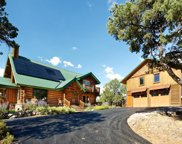 1215 Crystal Springs Mountain, Carbondale image