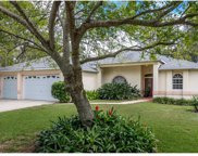 10043 Waltzing Lane, Seminole image