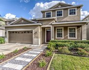 20419 Autumn Fern Avenue, Tampa image