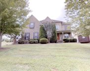 1341 Round Hill Ln, Spring Hill image