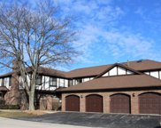 6370 West Orchard Drive, Palos Heights image