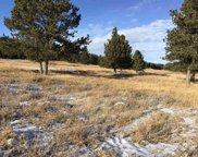 TBD Us Highway 385, Custer image