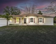 8935 Promise Drive, Tampa image
