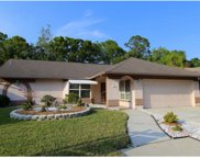 12217 Steppingstone Boulevard, Tampa image