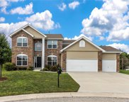 1032 Crooked Stick, Caseyville image