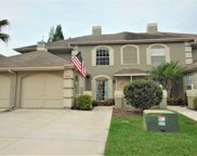 14036 Notreville Way, Tampa image